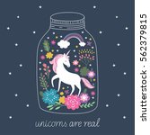 unicorn are real | Shutterstock . vector #562379815