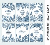 floral card design templates.... | Shutterstock .eps vector #562412245
