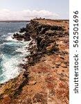 Plaza Island  Galapagos Island...