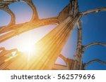 ruins of a church in lisbon ...   Shutterstock . vector #562579696