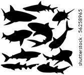 Sharks Silhouette Vector...