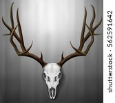 realistic deer skull and...