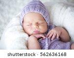 newborn baby sleeping sweetly. | Shutterstock . vector #562636168