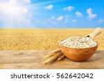 ears of oats and oatmeal in... | Shutterstock . vector #562642042
