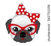cute french bulldog girl... | Shutterstock .eps vector #562731358