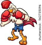 cartoon boxer chicken. vector... | Shutterstock .eps vector #562735096