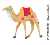 Camel Cartoon Vector...