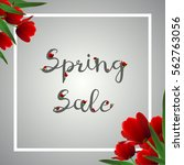 grey spring banner with red... | Shutterstock .eps vector #562763056