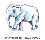 Stock photo watercolor blue elephant 562790932