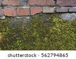 Brick And Moss Patterns