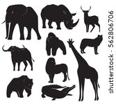 Stock vector collection of wild animal silhouettes 562806706