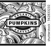retro pumpkin harvest label... | Shutterstock . vector #562833232