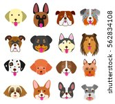 cute dogs faces set | Shutterstock .eps vector #562834108