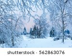 picture of a winter landscape... | Shutterstock . vector #562863076