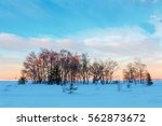 picture of a winter landscape... | Shutterstock . vector #562873672