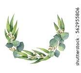 watercolor hand painted wreath... | Shutterstock . vector #562955806