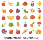 simple stylized icons of... | Shutterstock .eps vector #562985812