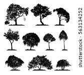 vector set of deciduous trees ... | Shutterstock .eps vector #563134252