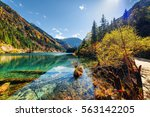 beautiful view of the arrow...   Shutterstock . vector #563142205