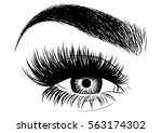 gorgeous eye makeup and brow | Shutterstock .eps vector #563174302