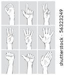 hand signs | Shutterstock .eps vector #56323249