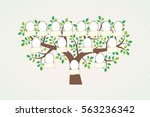 family tree and nameplate.... | Shutterstock .eps vector #563236342