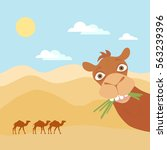vector image of  camel on ... | Shutterstock .eps vector #563239396