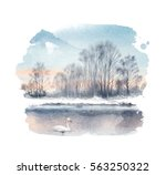 white mute swan on a lake.... | Shutterstock . vector #563250322