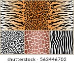 Set Safari Jungle Animal Fur...