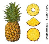 whole pineapple and three types ... | Shutterstock .eps vector #563544592