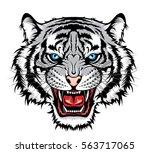 tiger head | Shutterstock .eps vector #563717065