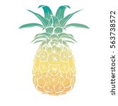 pineapple vector illustration | Shutterstock .eps vector #563738572