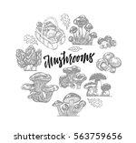 Edible Mushroom Icons Round...