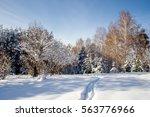 Path Trail In Winter Bright...