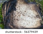 burnt book pages - stock photo