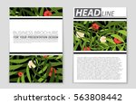 abstract vector layout... | Shutterstock .eps vector #563808442
