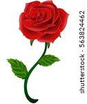 vector illustration of blooming ... | Shutterstock .eps vector #563824462
