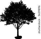 silhouette of isolated tree | Shutterstock .eps vector #5639896