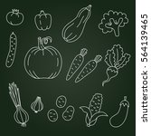 vegetables doodles vegetarian... | Shutterstock .eps vector #564139465