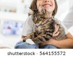 Stock photo happy kid at home playing with kitty cat 564155572