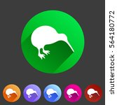 kiwi bird icon flat web sign... | Shutterstock .eps vector #564180772
