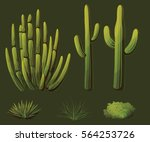 Set Of Plants Growing In The...