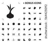 onion icon illustration...   Shutterstock .eps vector #564425092