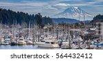 mount rainier view for gig... | Shutterstock . vector #564432412