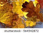 The Autumn Background With...