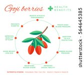 goji berry health benefits and... | Shutterstock .eps vector #564645385