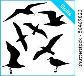 Vector Silhouettes Of Sea Gull...