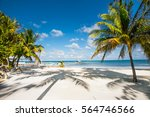 beautiful  caribbean sight with ... | Shutterstock . vector #564746566