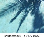 shadow of a palm tree on a blue ... | Shutterstock . vector #564771022