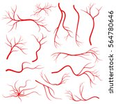 human eye veins  vessel  blood... | Shutterstock .eps vector #564780646